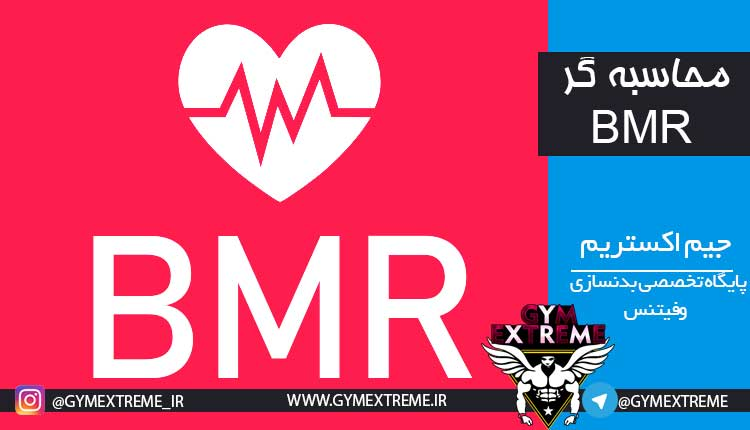 Photo of محاسبه گر کالری BMR