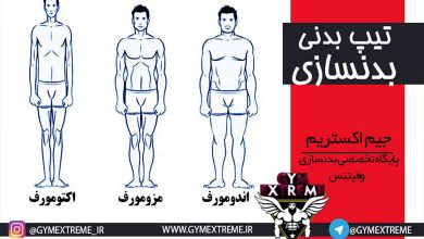 تصویر انواع تیپ بدنی اکتومورف،مزومورف و اندومورف