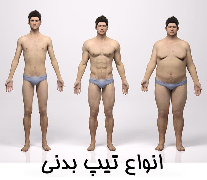 انواع تیپ بدنی